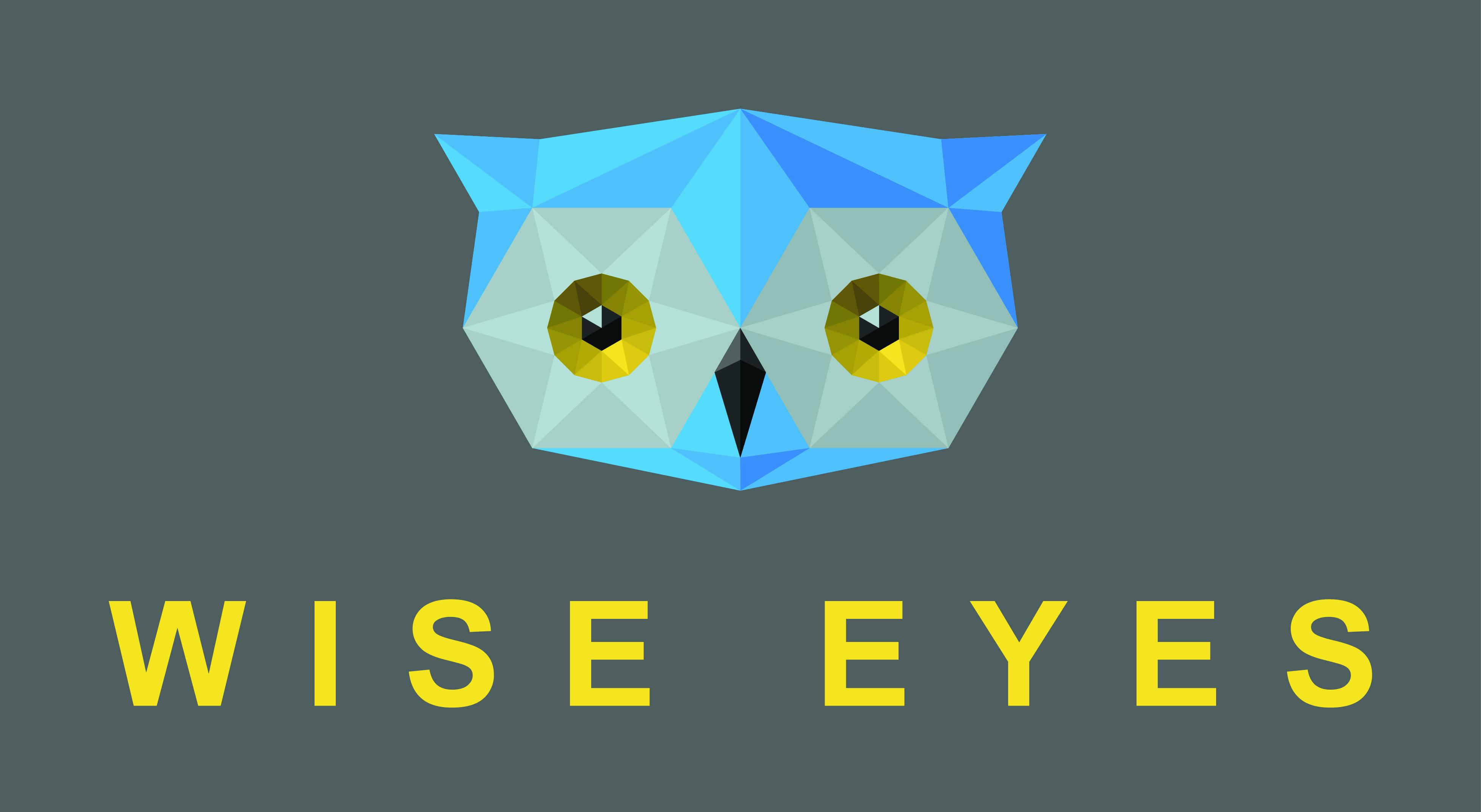 Wise Eyes Website